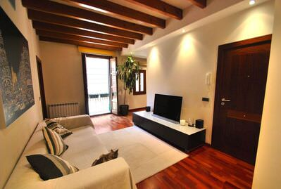 modern-apartment-fully-renovated-in-the-old-palma-de-mallorca-apartment-9247546