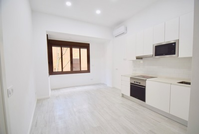 renovated-apartment-near-the-borne-palma-de-apartment-17768298