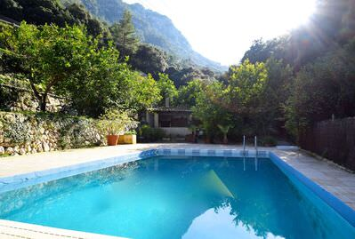 beautiful-finca-with-a-ecological-lemon-plantation-of-200-trees-soller-house-9247610