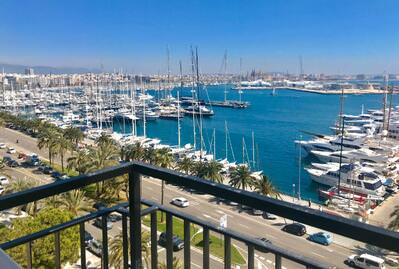 amazing-flat-at-the-paseo-maritimo-with-stunning-sea-views-and-terrace-on-the-8th-floor-with-lift-palma-de-apartment-14212551