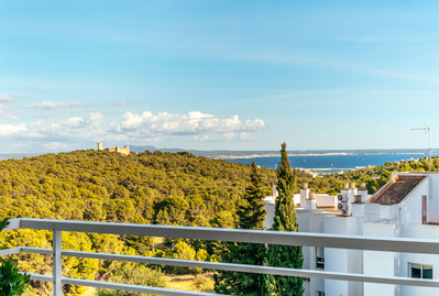 exclusive-flat-in-genova-with-terrace-and-sea-views-palma-de-apartment-17743849
