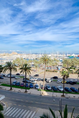 bright-and-spacious-apartment-with-sea-views-on-paseo-maritimo-palma-de-apartment-18438847