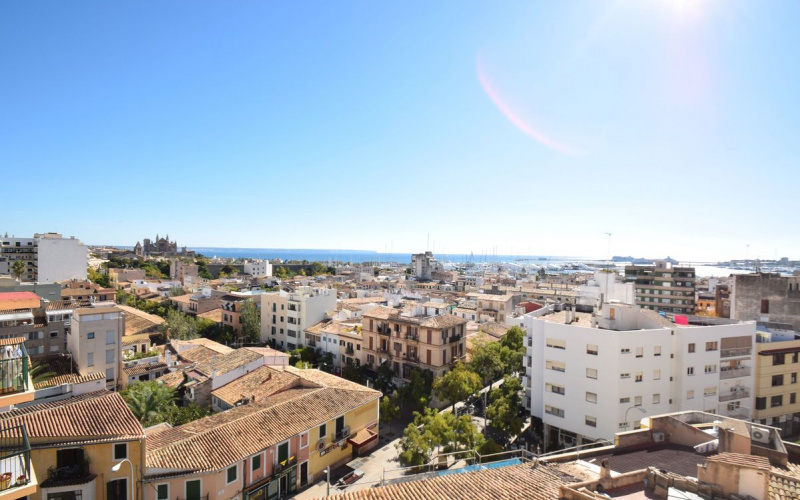 its-all-about-the-view-from-santa-palma-de-mallorca-apartment-9247446