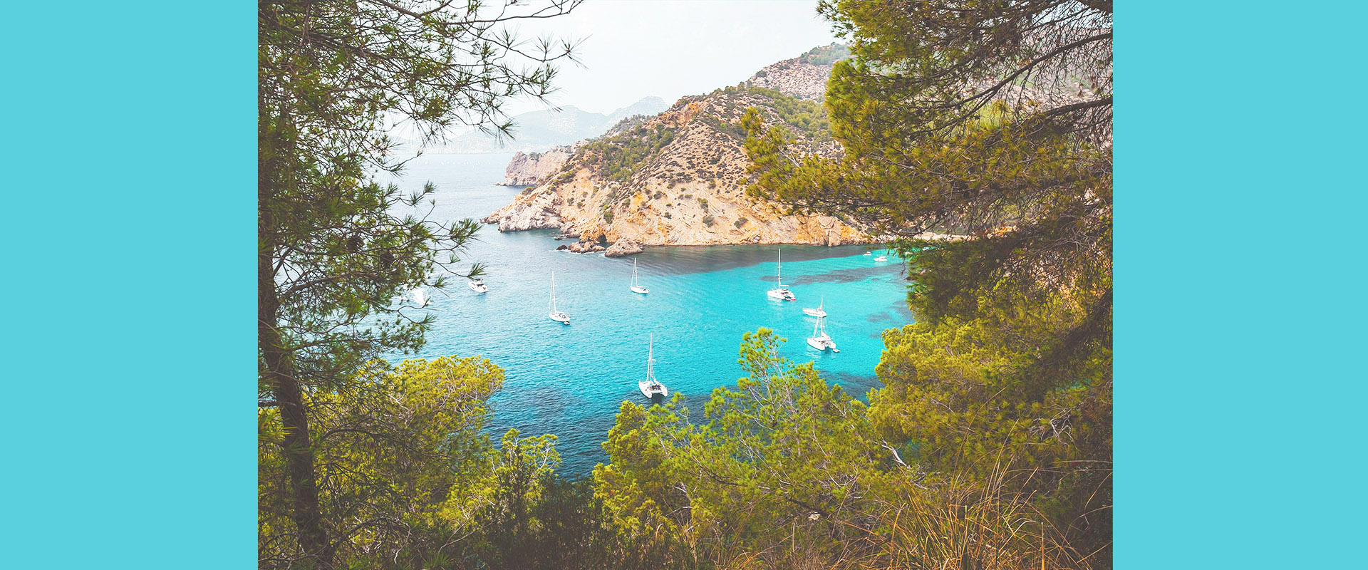 bconnected-blog-Mallorca is back to its full splendour